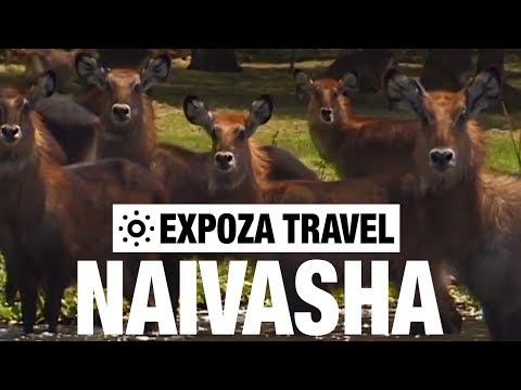 Naivasha (Kenya) Vacation Travel Video Guide