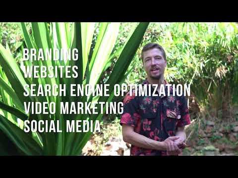 Your Marketing + Branding Agency in San Diego | Falco Strategics