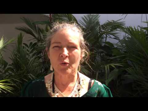 Professor Elisabeth Holland -  International Consultation - Fiji - 6 July 2016