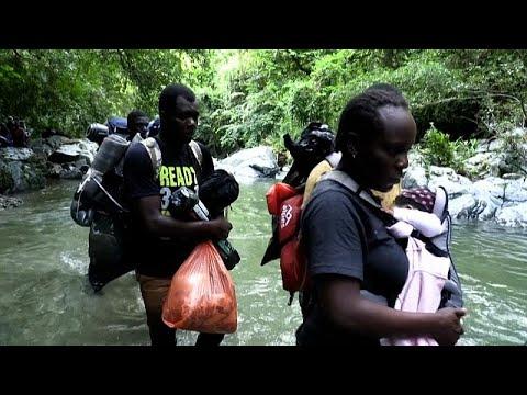 شاهد: المهاجرون الهايتيون يعبرون الغابة الكولومبية للوصول إلى حدود بنما ثم الولايات المتحدة…