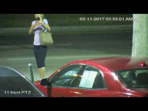 purse snatching 2/11/17