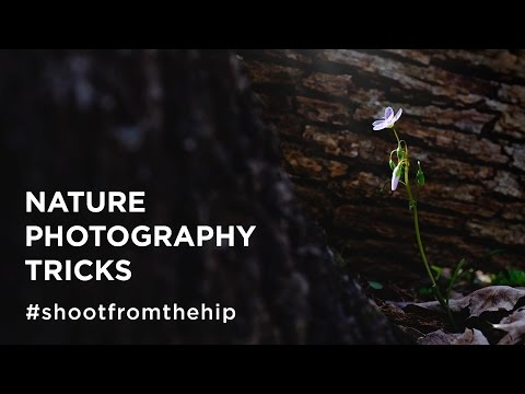 Nature Photography Tricks - Shoot from the Hip Photography Vlog (Ep #3)