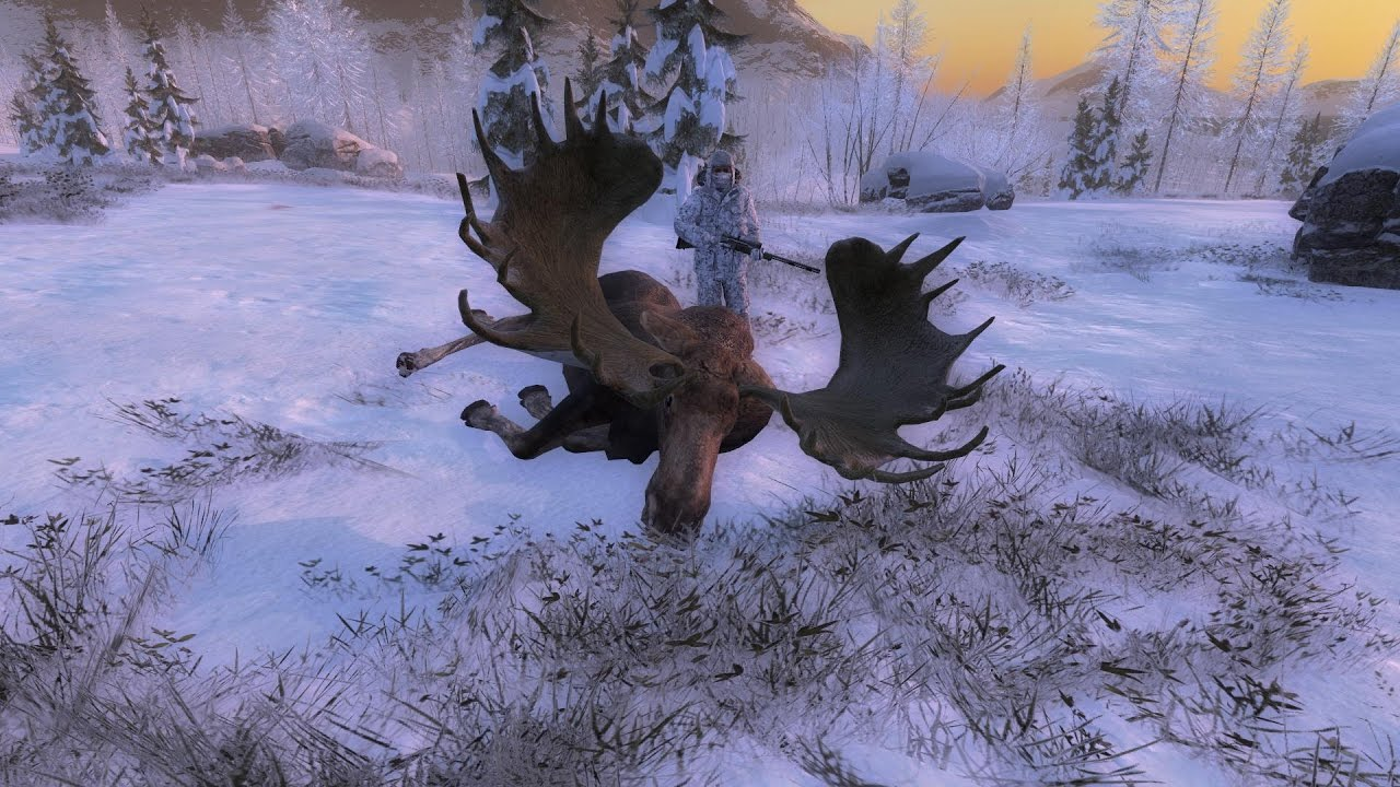 Play The Hunter
