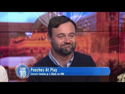 Gyton Grantley: Pooches At Play  Studio 10