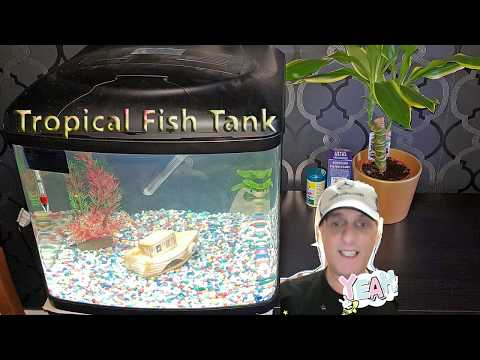 Aquarium Fish Tank Setup Interpet