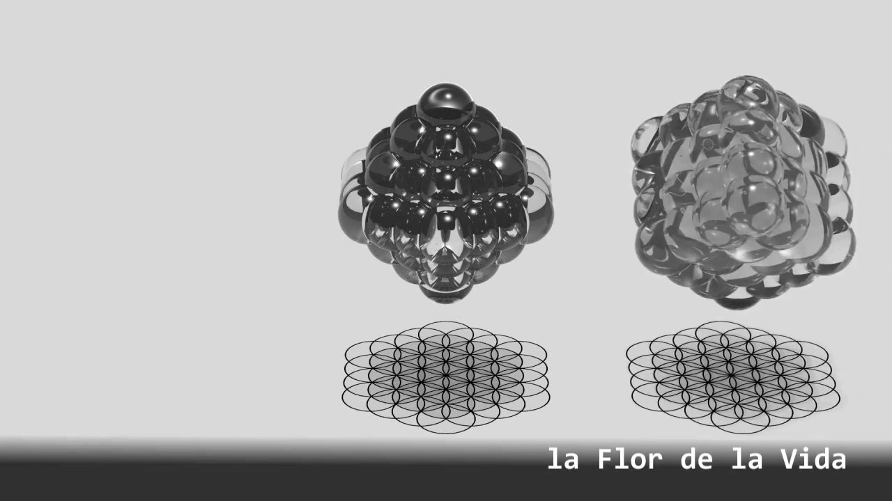 La Simbologia del Divertabah II - Geometría Sagrada - La Flor de la Vida