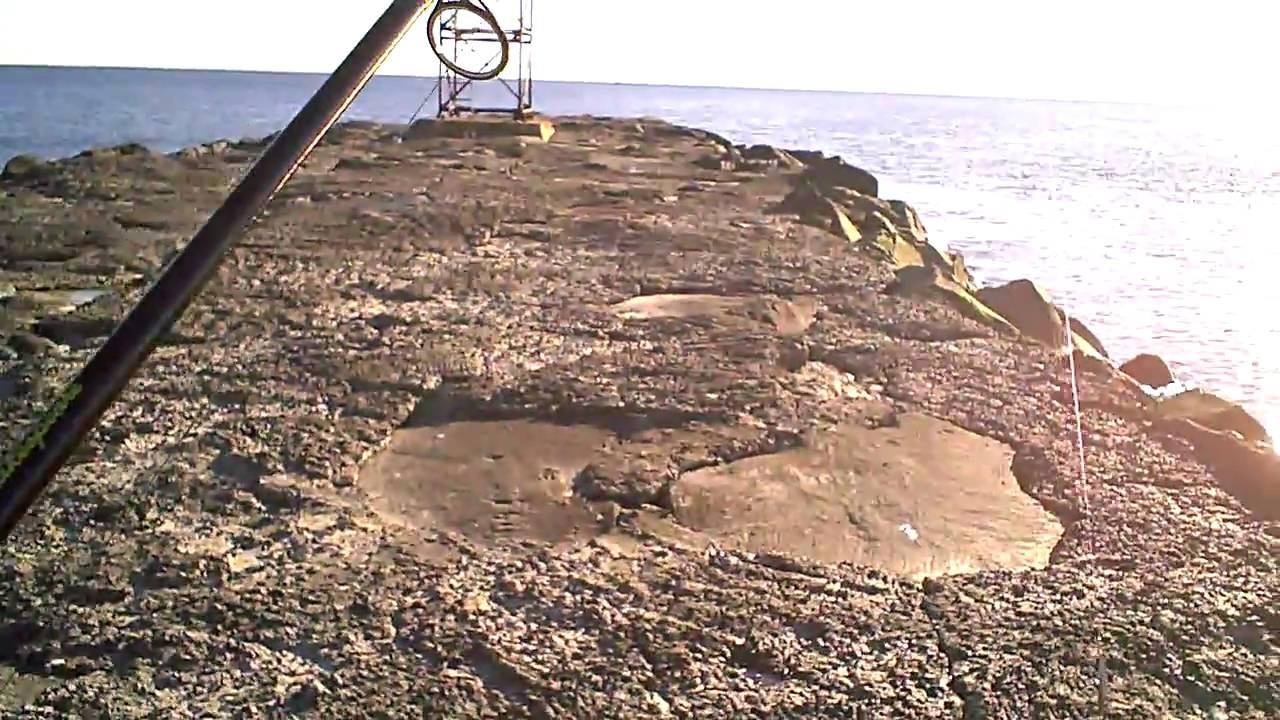 Fishing shark river inlet in belmar nj 12 23 09 youtube for Fishing report belmar nj
