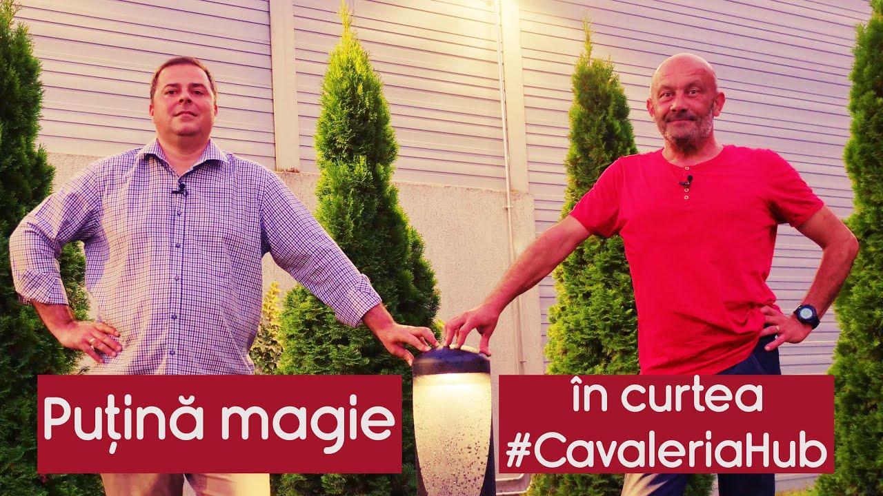 Puțină magie în curtea #CavaleriaHub - CASEBUNE.RO