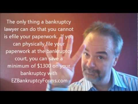 San Jose Bankruptcy Lawyer Alternative $44