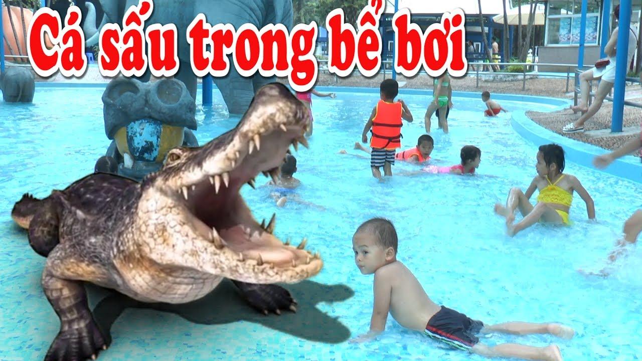 Cá sấu vui đùa cùng các bé trong bể bơi Hồ Tây, Kênh Em Bé
