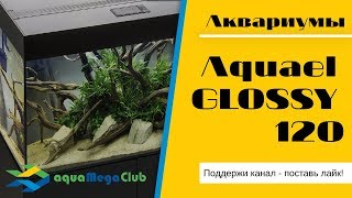 Аквариум Акваэль Глосси 120 (AQUAEL GLOSSY) - обзор и варианты дизайна