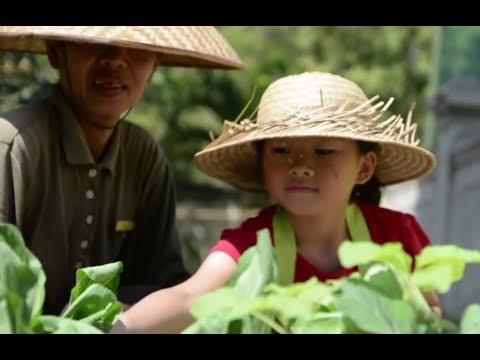 Organic Food at Sofitel Bali Nusa Dua Beach Resort