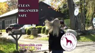 It's Pawsible! Dog Training Center Videos