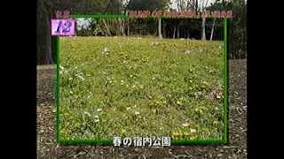 2009年2月14日(土)放送 http://www.tv-tokyo.co.jp/adomachi/backnumber...