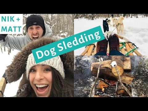 Day in the Life  Dog Sledding | NIK + MATT VLOG 1