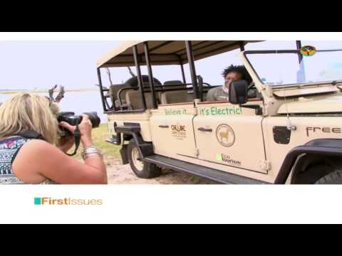 South African Business Etiquette & Environmental Conservation