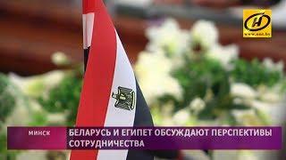 Беларусь и Египет обсуждают перспективы сотрудничества