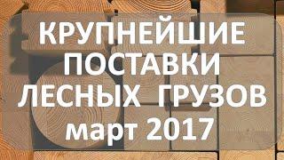 видео Экспорт пиломатериалов