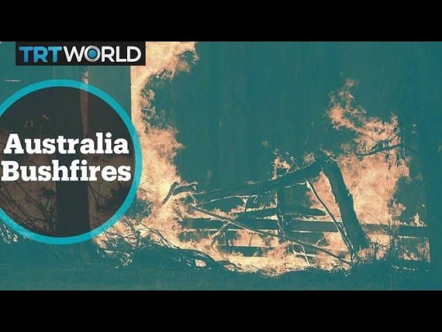 Australia Bushfires: Fires to worsen amid hot, dry conditions