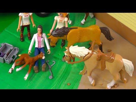 Vet Helps Foal ! Spirit Riding Free + Lucky - Horse Video