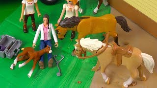 Vet Helps Foal ! Playmobil Spirit Riding Free + Lucky - Horse Play Video