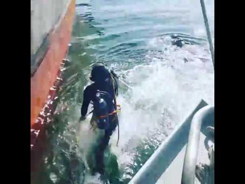 Aquadiver Panama Underwater Inspections