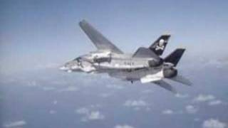F14: Tomcat vs Migs