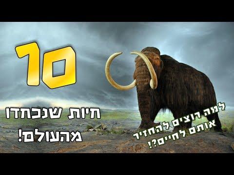 קצת מידע: 10 החיות שנכחדו מהעולם ! למה רוצים להחזיר אותם לחיים ?!