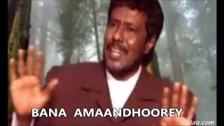 Download SHIMAALI - HEES MAAY  MAAMOOW