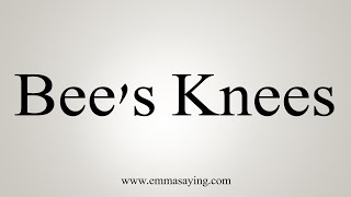 How To Say Bee's Knees