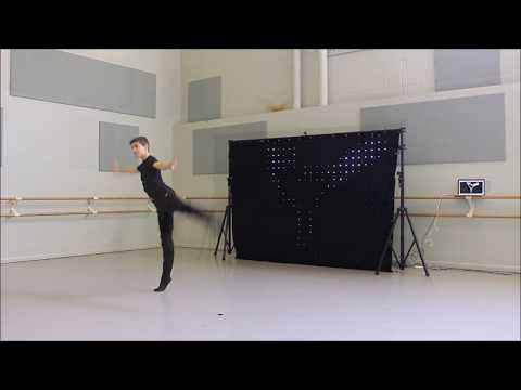 Silhouettes: an interactive art exhibit