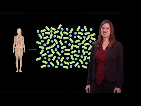Lora Hooper (UT Southwestern) 1: Mammalian gut microbiota: Mammals and their symbiotic gut microbes