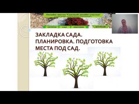 Закладка плодового сада. Планировка. Подготовка почвы.