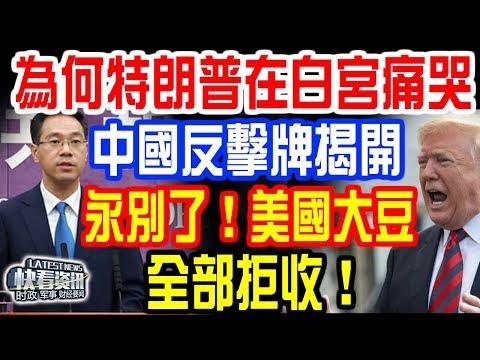 為何特朗普在白宮痛哭?中國反擊牌揭開:永別了!美國大豆!全部拒收!150億救急也沒用!