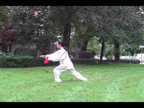 Tai Chi Schwert 太极剑 von Xiaoling Röbbig-Reyes/Guo