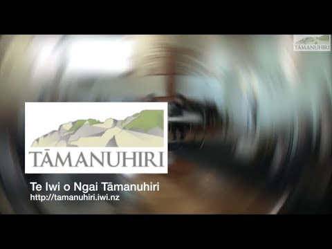 Design of the Tairawhiti Maori Land Service
