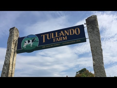 Clear Water Filtration - Tullando Farm