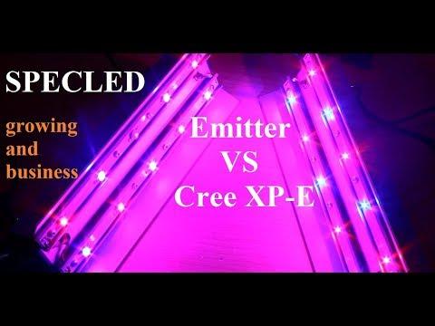 Сравнение мощности светового потока светодиодов 'emitter' и Cree XP-E. Фитолампы для  бизнеса