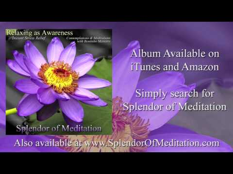 The Equanimity of Awareness with Bentinho Massaro - Splendor of Meditation - www.InnerSplendor