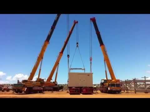 Cranes in Western Australia (photos)
