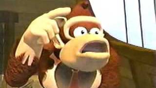 Donkey Kong Song#6: The Mirror Never Lies