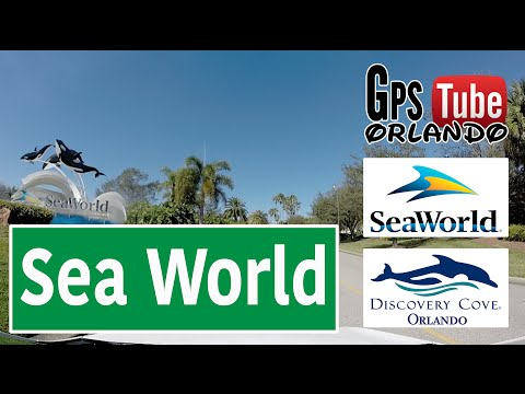ORLANDO, I Drive - SeaWorld e Discovery Cove