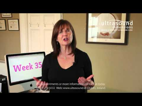 35 Weeks Pregnant Your 35th Week Of Pregnancy