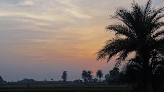 Amar je Sab Dite Hobe- Lyrics:-Rabindranath Tagore || Singer:- Subhasree Chakraborty