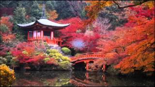 Дикая природа Японии фото(Природа Японии. В природе всё взаимосвязано животные, птицы, растения и даже дождь! Приметы про дождь посмо..., 2015-10-12T19:51:23.000Z)