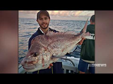 Fishwatch | 9 News Perth