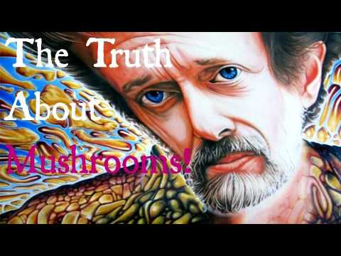 Terence McKenna - The Truth About Mushrooms!