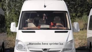 Заказать микроавтобус. Микроавтобус на свадьбу