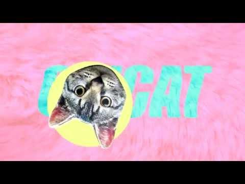 VISUALS • CITCAT BAR ROTTERDAM #2