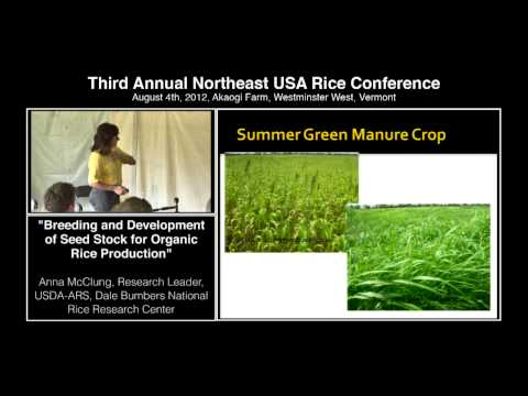 """Breeding and Development of Seed Stock for Organic Rice Production"" - Anna McClung, USDA-ARS"